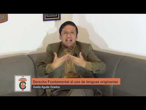 Programa 36 - Derecho fundamental al uso de lenguas originarias - Tribuna Constitucional