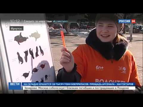 Москвичи смогут проверить свою экологическую зоркость