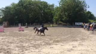 Unaffiliated Showjumping Sunday 5th June 2016