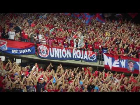 Firmes hasta el final / Rexixtenxia Norte / DIM vs Emelec - Rexixtenxia Norte - Independiente Medellín - Colombia - América del Sur