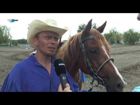 Western lovas OB forduló a Hortobágyon