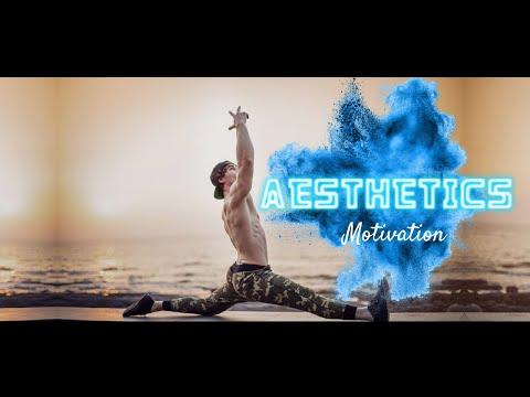 AESTHETICS - GYM Motivation 🔥