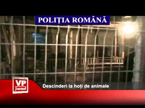 Descinderi la hoți de animale