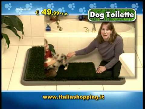 Dog Toilette - il primo bagnetto per cani