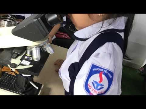 Kính hiển vi giúp trẻ khám phá thế giới hiển vi thật dễ dàng