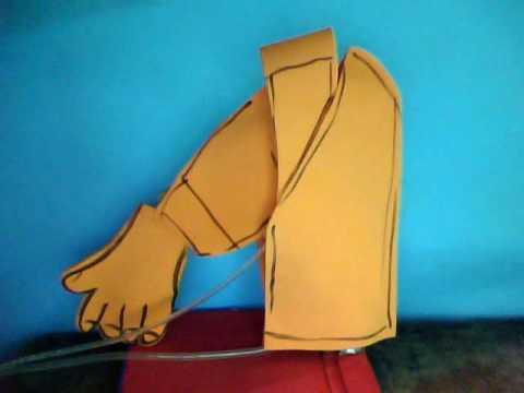 brazo hidráulica                               tecnología
