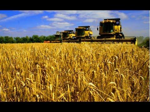 Виступ голови ОДА В.П.Гунчика на навчанні керівників сільськогосподарських підприємств та голів фермерських господарств області
