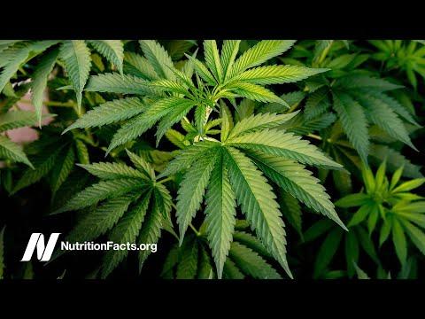 Nutrition - Does Marijuana Cause Health Problems?
