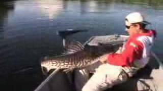 Pesca Dinâmica - Pescaria Variada No Rio São Benedito, Parte 2
