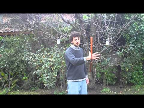 nunchaku - http://nunchakututorials.com Learn freestyle nunchaku from zero. This video is to let you know about the basic manipulation of your nunchucks for freestyle.