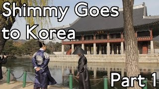 Shimmy Goes to Korea - Part 1 in Seoul