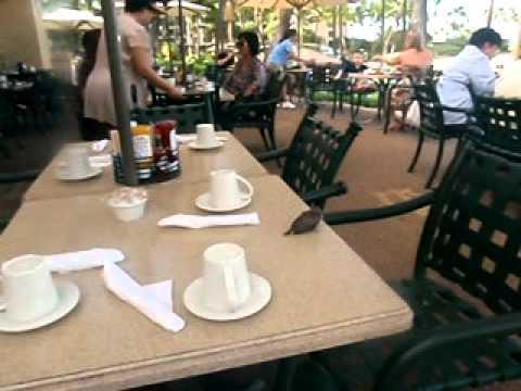Hawaii Breakfast buffet