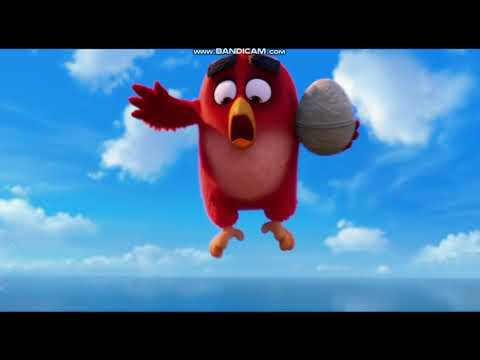 The Angry Birds Movie (2016) Opening Logos and Scene