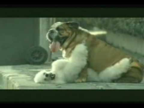 Banned Commercial - Dog Suicide