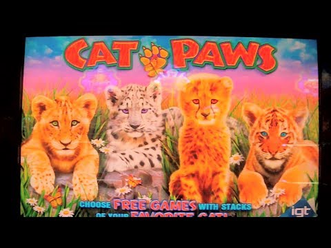 NEW SLOT MACHINE Cat Paws FIRST LOOK Las Vegas Slots Win