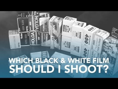 Black & White Film Guide, Shootout, and Comparison - 35mm, 400 ISO