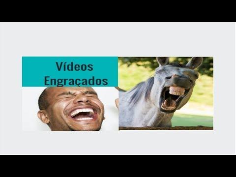 Piadas engraçadas - Vídeos Engraçados - Ovo Na cara + Vídeos de Bêbados