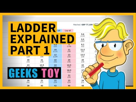A Geeks Toy Pro Ladder Explained Part 1
