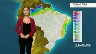 Os produtores de trigo estão preocupados por conta da geada dos últimos dias. Os estragos já podem ser observados. Confira como fica o acumulado de chuva para todo o Brasil nos próximos dias.