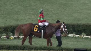 OAKLAWN RACE REPLAY: 2017 900000 Rebel Stakes Featuring Malagasy!
