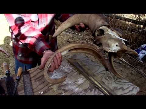 Making Sheep Horn Bows