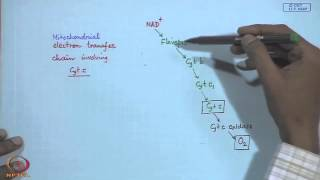 Mod-05 Lec- 05 Electron Transport Proteins - I