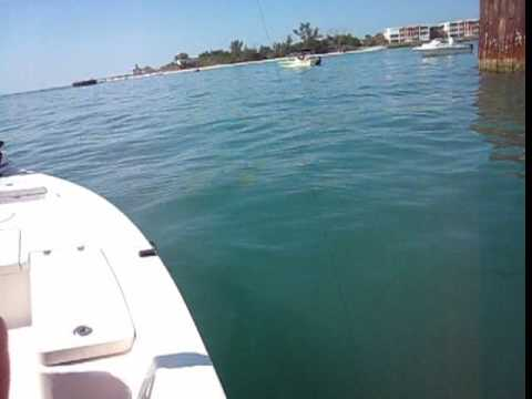 Deep sea offshore fishing in ft myers fl outdoor for Deep sea fishing fort myers beach