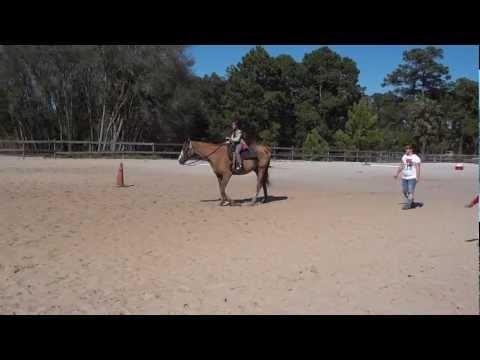 Horseback riding Orlando Florida