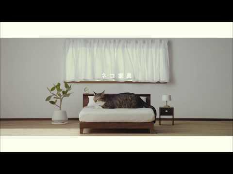 【ネコ家具できました】篇