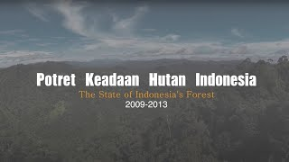 Potret Keadaan Hutan Indonesia periode 2009-2013