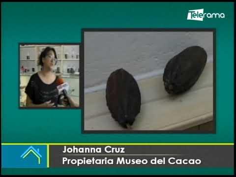Museo del Cacao en Cuenca para conocer su historia