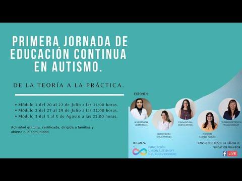 Aspectos generales del autismo   Agrupación TEAbrazo   Puerto Varas