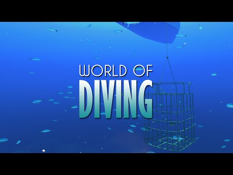 World of Diving Early Access Update June 2016
