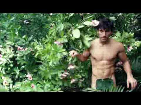 如果亞當是這個樣子的話,就算是那麼正的夏娃也無法生出我們啊!