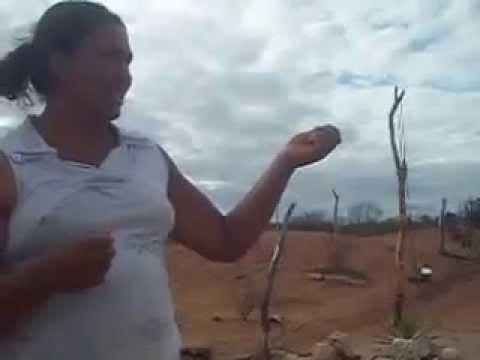 MORADORA FALA DO TEMPORAL NA FAZENDA LAGOA PRETA EM ARACATU
