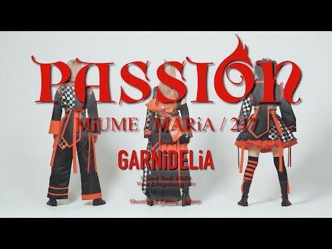 , title : '【みうめ・メイリア・217】PASSION【踊っちゃってみた第9弾】'