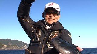 グレのタナをさグレ!フカセ釣りでグレを狙う!