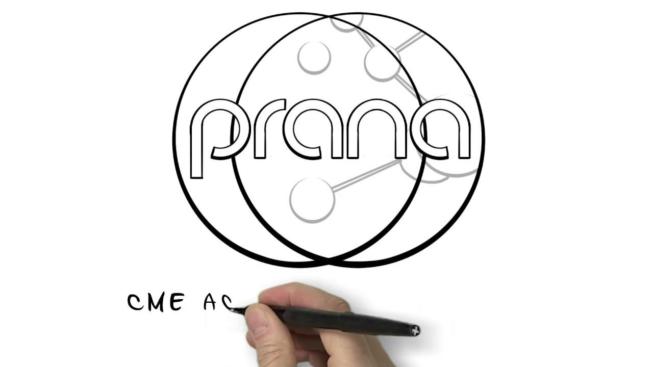 Whiteboard Video - Prana Essentials