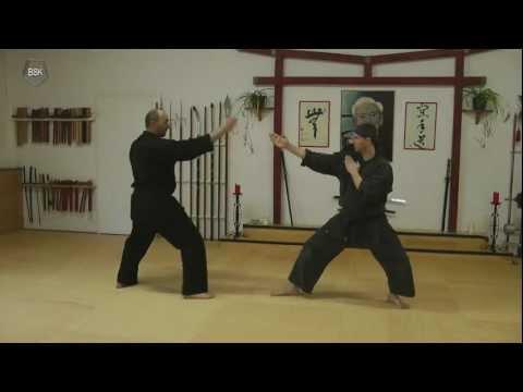 Taijutsu kihon Seminar 2011