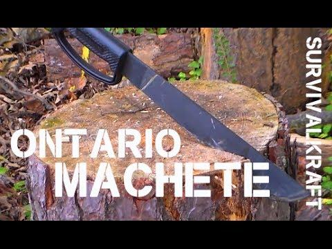 Ontario 12