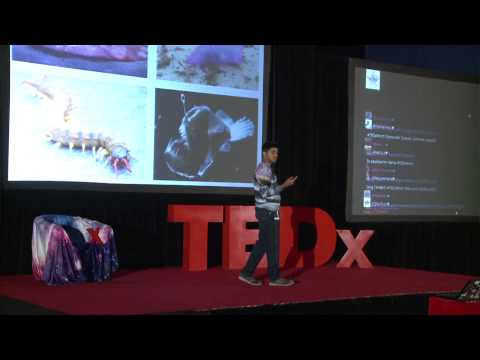 Impact of the discovery of intelligent alien life | Taher Kathawala | TEDxYouth@Winchester