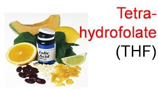 Tetrahydrofolate (THF)