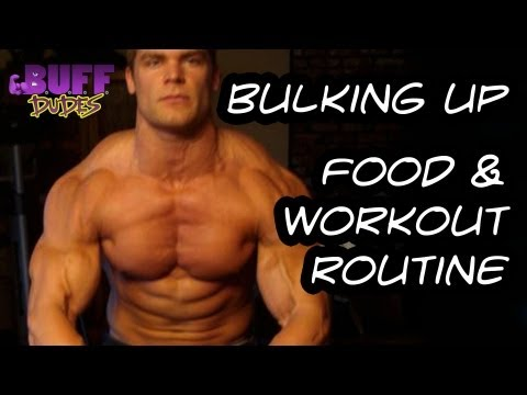 Bulking Up – Daily Diet and Workout Routine