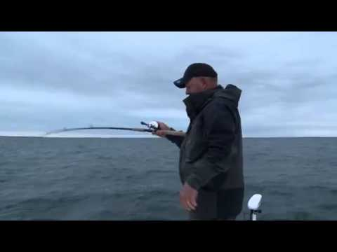 Best Striped Bass Fishing Lures: Creek Chub Pin Popper How to Fish  Popper Lures from Surf or Boat