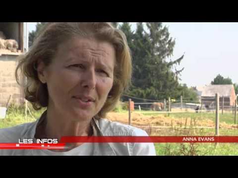 Anna Evans, spécialiste de communication intuitive avec les animaux1