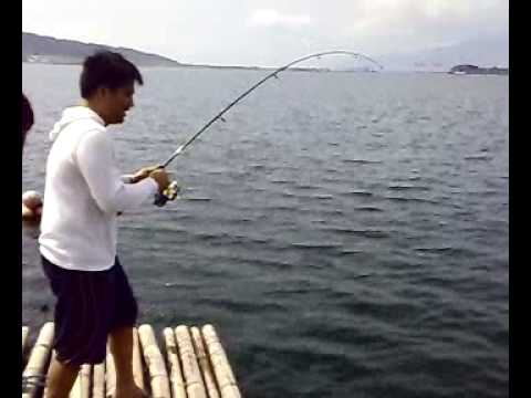 BIG FISH IN SUBIC