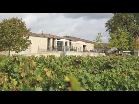 vends  trois bouteilles château FERRAND 1995 GC de St Emilion