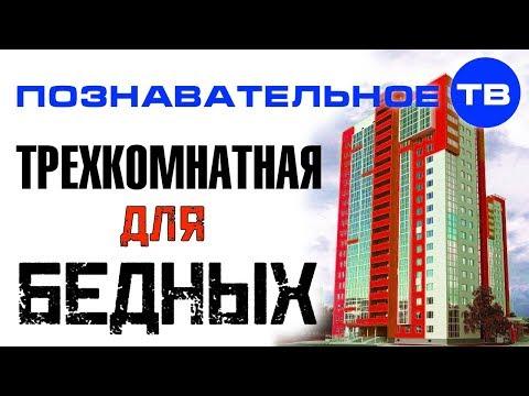 Квартирный взгляд: Трёхкомнатная для бедных (Познавательное ТВ, Артём Войтенков)
