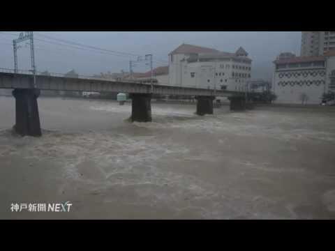 台風11号で武庫川が一部冠水