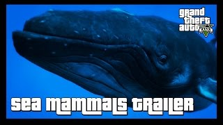 GTA 5 Wildlife Documentary  Sea Mammals Trailer 2GTA 5 Wildlife Documentary  Sea Mammals Coming 5th May!We are about to embark on a journey into the lives of some of the most extraordinary creatures of GTA 5.  » Don't forget to like the video and subscribe to the channel for more ridiculous videos like the one you've just seen.» Support me by becoming an 8-Bit Bastard Patreon, you'll gain access to exclusive content! https://www.patreon.com/8BitBastardStay Connected!• Twitter: https://twitter.com/8Bit_Bastard• Patreon: https://www.patreon.com/8BitBastard• Facebook: https://www.facebook.com/8BitBastard/